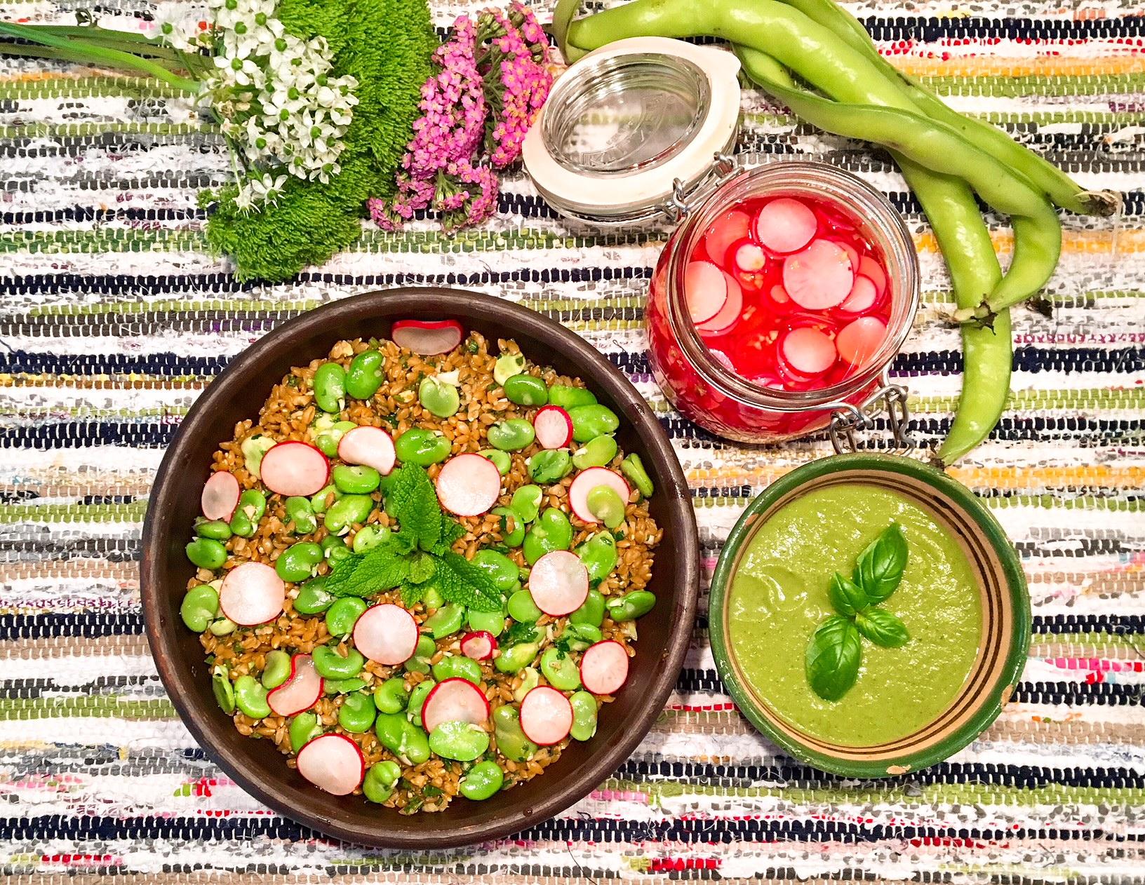 Petit épeautre aux fèves, pickles de radis et gaspacho de cosses de fèves